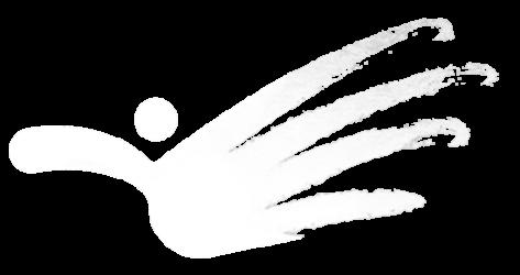 Osteopathiepraxis